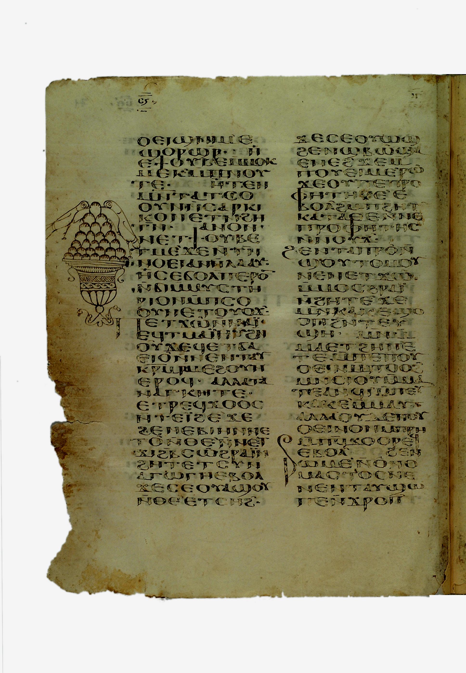Ifao Copte 2, f. 71v