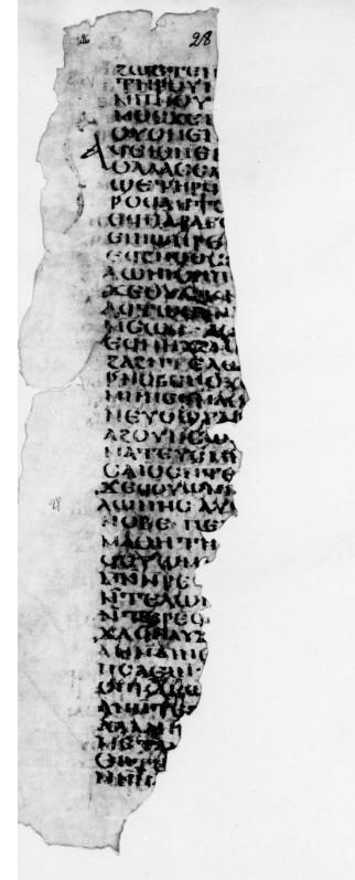 Paris, BNF Copte129(7)f.28R